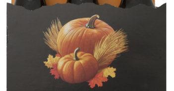 pumpkin-seasonal-ale-6-pack-3